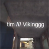 tim / Viking